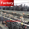 Direct factory automatic chicken cage system with high quality