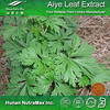 Natural Free Sample Plant Extract Herbal Ingredient Artemisia Princeps Leaf Extract Aiye Leaf Extract Powder