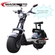electric double seat mobility scooter big wheels City scooter /citycoco electric scooter 800w