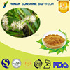 Natural botanical extract Sparganium Stoloniferum Extract Powder