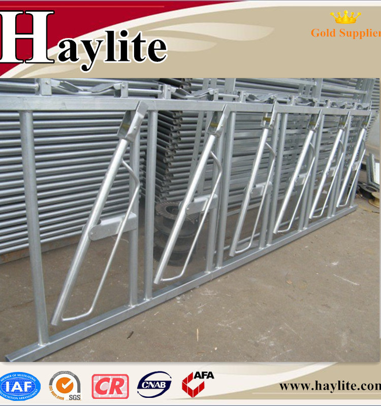 Animal Feeding Equipment of 5 Cattle Cow Dairy Headlcok