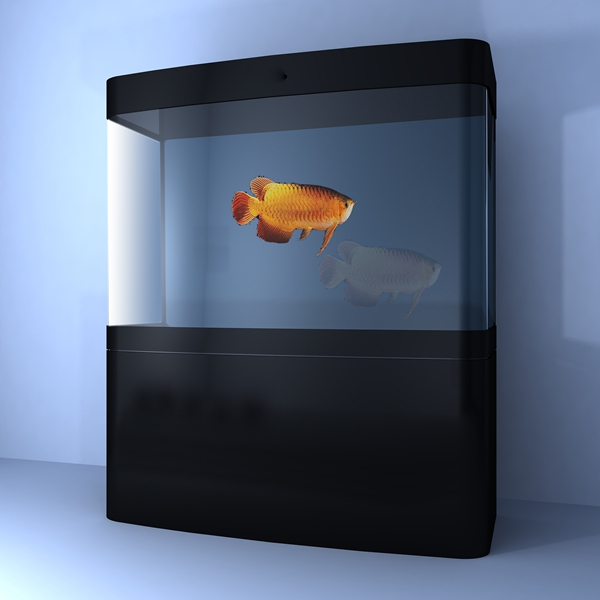 Saler Aquarium Store   Acrylic Cylindrical Aquarium Tank Acrylic Cylindrical Aquarium Tank