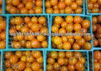 fresh yellow cherry tomatoes