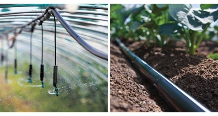 Gutter Connected Greenhouse With Drip Irrigation Buy
