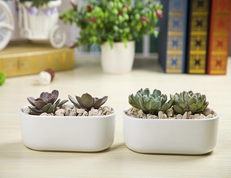 Ceramic Round Planter Pot Modern Indoor Plant Holder Flower Pots For Plants