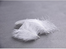 Manufacturer Supplier Wholesale Low MOQ Duck Feather 1-2cm/2-4cm/4-6cm