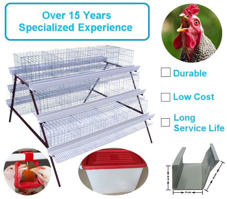 Chicken hen cage 2