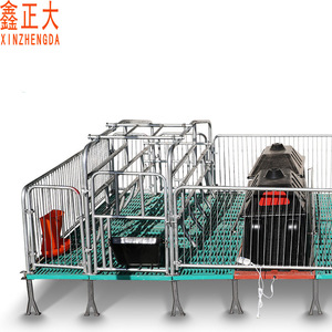 Modern pig farming equipment sow farrowing crate for sows and piglets