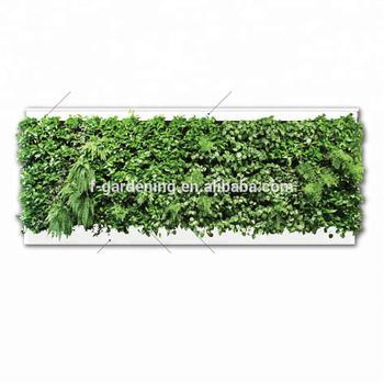 Diy Hydroponics Green Wall Plant Pot Home Garden Indoor Living Wall Buy Indoor Living Wall Diy Hydroponics Pot Hydroponics Green Wall Product On Alibaba Com