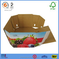 Advanced A Large Popular Factory Dry Fruit Box With Special Design