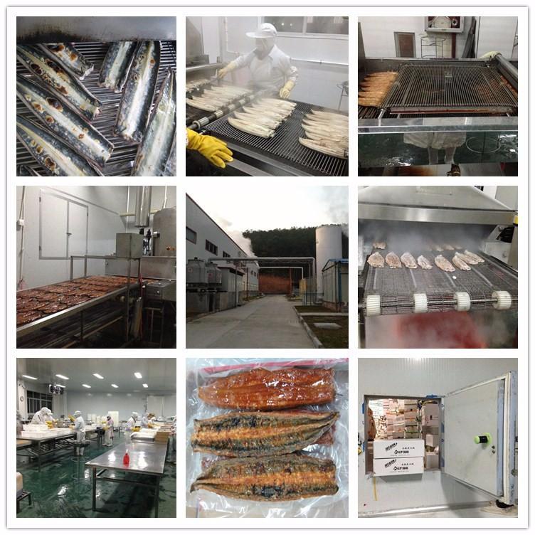 Unagi Anguila unagi kabayaki anguila ahumada en Anguila con precio de fábrica de la venta caliente