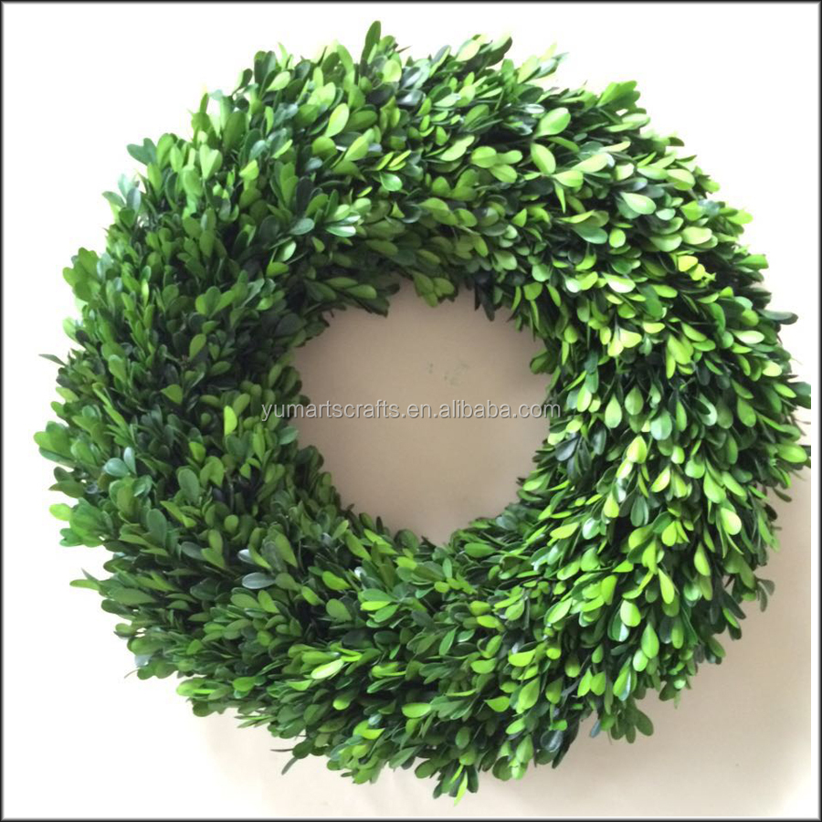 Preserving Tree Branches For Decoration Decorative Preserved Holly Leaves Wreath Buy Preserved Holly