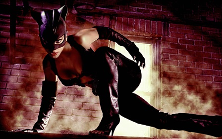 sexy catwoman cool pose 4 Size Home Decoration Canvas Poster Print