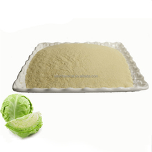 wholesale bulk dehydrated food dried cabbage powder