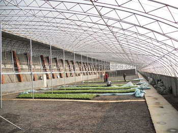 rectangular greenhouse for sale cheap commercial greenhouse