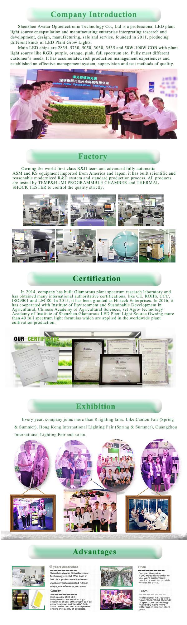 Company-information