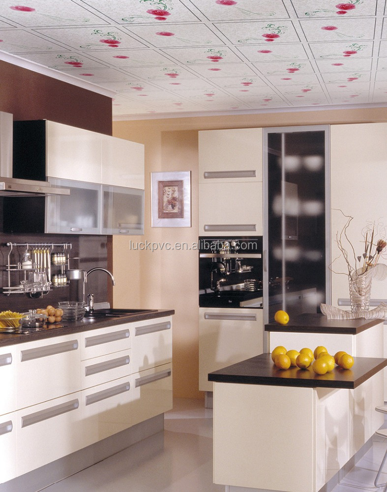 Paneles cocina perfect cocina cocina with paneles cocina good paneles japoneses kitchen with - Paneles acrilicos para cocinas ...