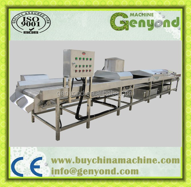 Commercial Fruit And Vegetable Blanching Machine/blanching ...
