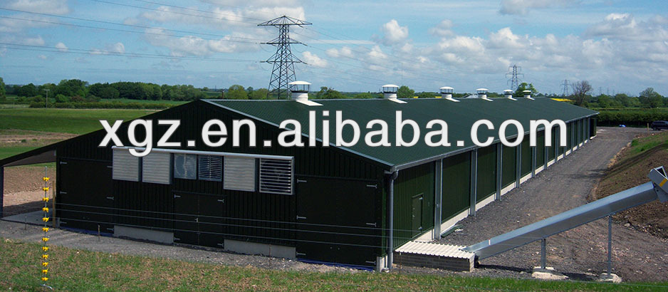 cheap prefab poultry barn environmental design automatic steel sructure shed for sale