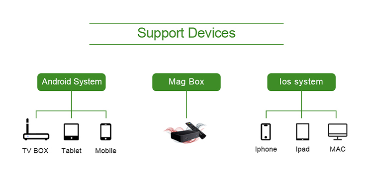 美国加拿大 IPTV 智能 IOS Android m3u mag 盒子 3000 + 阿拉伯语/法语/英国频道免费 4000 + VOD Smarters IPTV