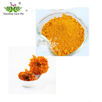 Factory supply Marigold Extract Lutein and Zeaxanthin Tagetes erecta L.