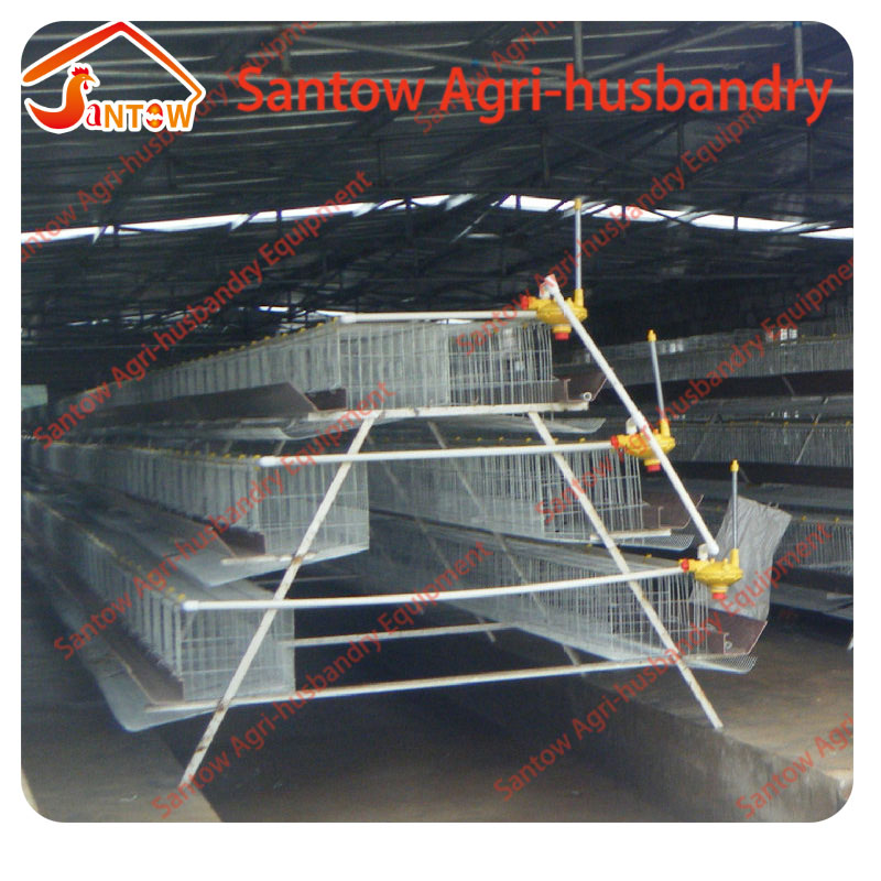 China Factory Stainless steel chicken egg layer cages with nipple drinker for chicken
