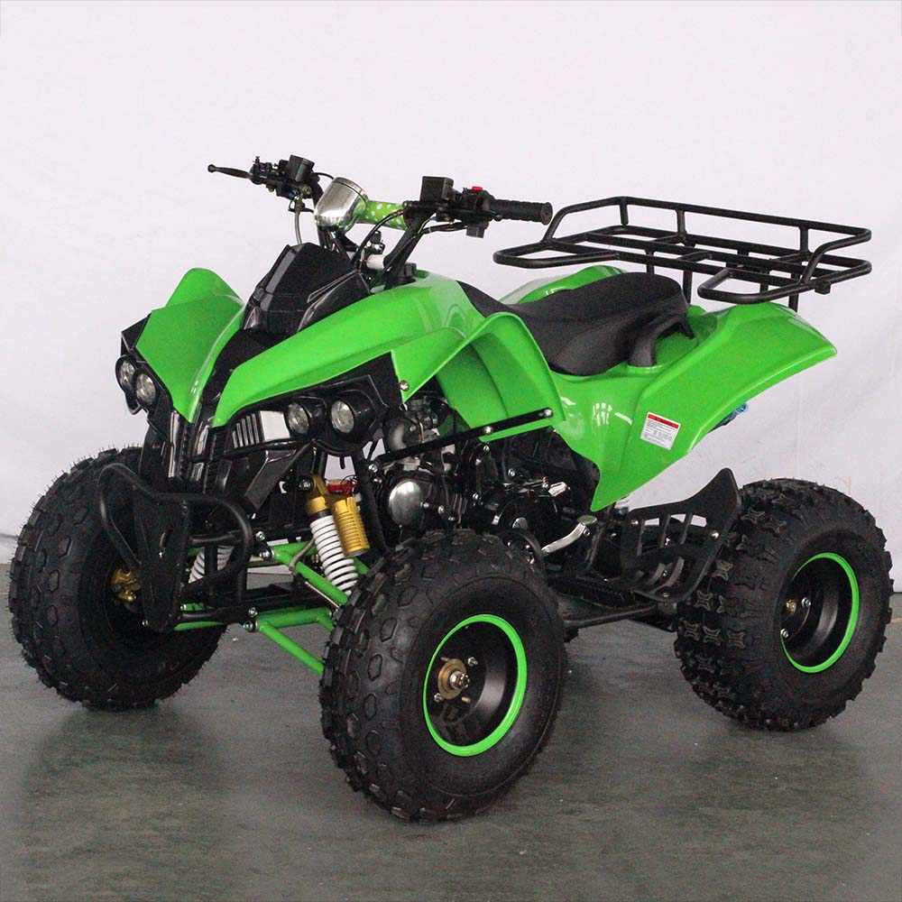 Side By Side Atv >> China New Brands Quad Side By Side Epa Atv 110cc Buy Side By