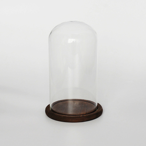 tall flower glass dome display artificial glass dome with black wood base