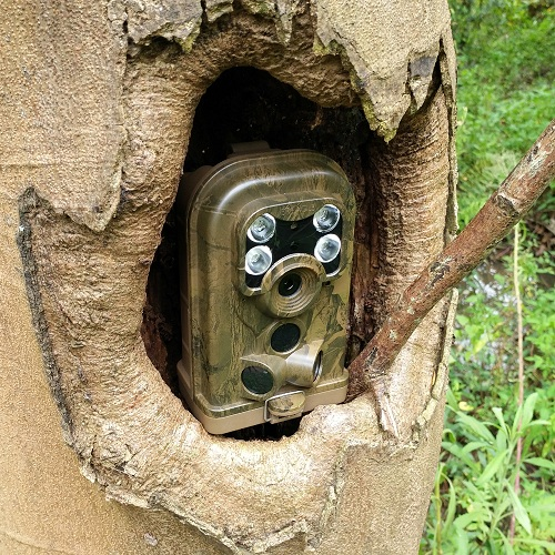 Manufacturing PIR Motion Detector Track Detecting Scouting Stealth Hunting Camera of Ereagle