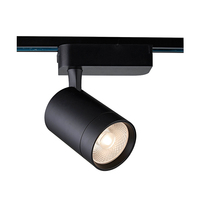 RANZI Manufacturer Supply 2700Lm Lumen 30W Cob Led Track Spot Light For Jewelry Shop Exhibition