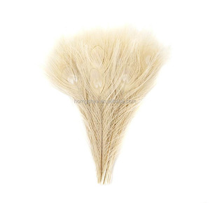 Wholesale blenched and custom colorful dyed peacock feather for decoration