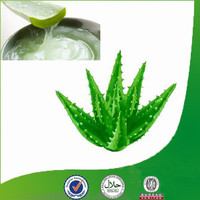 100% Natural Thickning Agent Aloe Vera Dry Extract for Food and Beverage