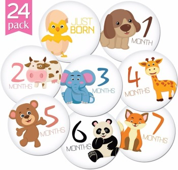 Factory Directly Supply Pearhead First Year Monthly Milestone Felt Animal Photo Sharing Baby Belly Stickers, 1-12 Months