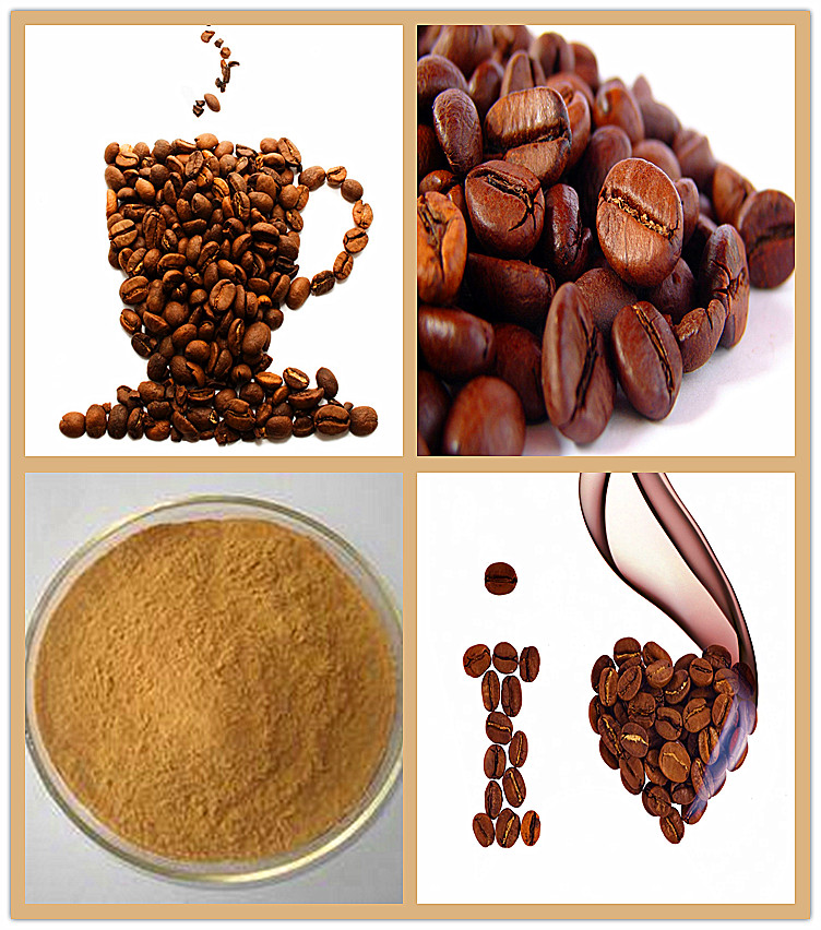 Free Sample Green Coffee Bean Extract Powder 50% Chlorogenic Acid ...