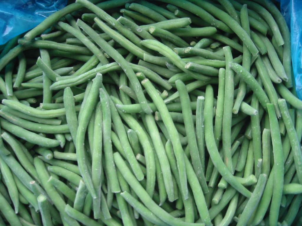 IQF frozen green beans wholesale green beans whole cut 2015 new price