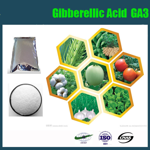 Ga3,Gibberellin,Gibberellic Acid,Plant Growth Regulator ...