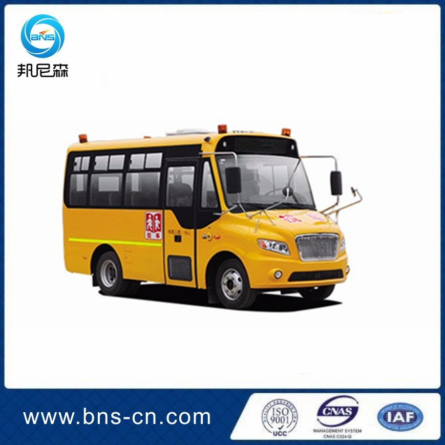 Factory Price Good Quality RHD/LHD Yellow Mini School Bus For Pupils