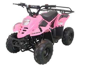50cc 110cc mini quad atv bike