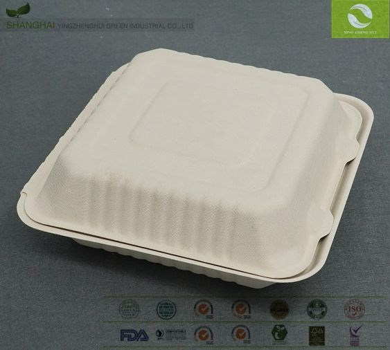 Chinese Biodegradable Take Away Bagasse Food Box