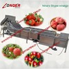 Professional Vegetable and Fruit Washing Machine|Air Billow Fruit Cleaner