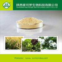 Fungicide insecticide agrochemical 1.2% becillus thuringiensis WP
