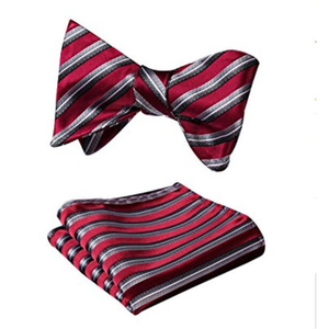 Well Selling Party Fashion Design Silk Bowtie