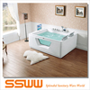 Sexy two persons acrylic and glass transparent massage bathtub with TV for home use