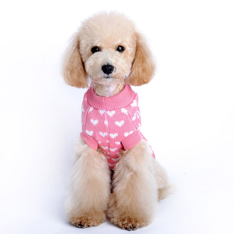 Al Por Mayor De Productos Para Mascotas Para Imprimir Perro Adorable ...