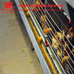 Jinfeng Factory Directly Supply Automatic A H Type Pullet/Layer/Broiler Chicken Cage