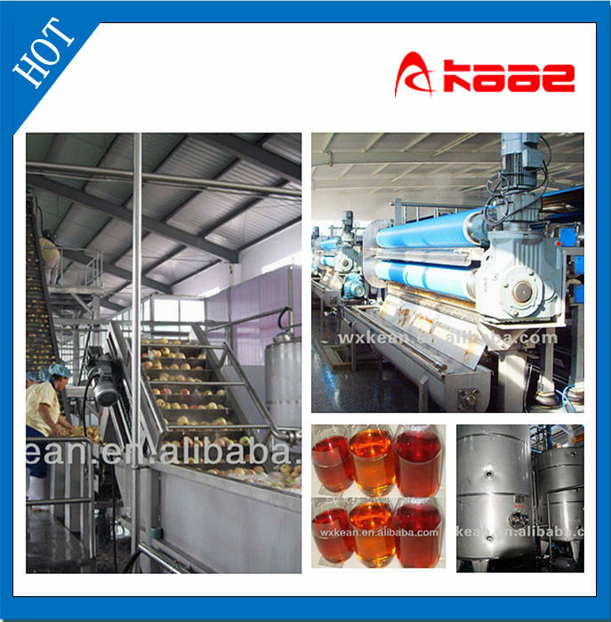 Good quality concentrated apple juice processing line manufactured in Wuxi Kaae