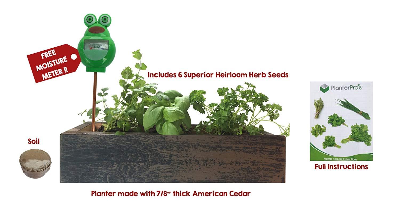 Herb Garden Cedar Planter - Complete Herb Garden Kit - Indoor Garden Seeds Growing Kit - Grow Cooking Herbs Basil, Chives, Oregano, Parsley, Thyme & Cilantro - Choice of 2 Colors
