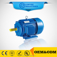 Y Series Three Phase permanent magnet ac synchronous motor