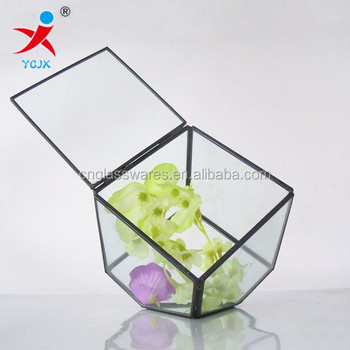 Hign Quality Geometric Terrariums Indoor Plants Glass Terrariums