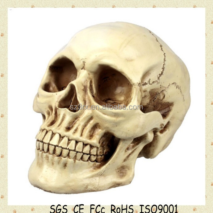 Personalized hottest items halloween toys/ plastic Halloween skull for craft/custom plastic skull head for halloween decoration